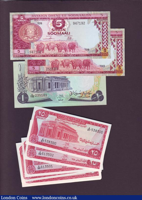 Sudan P-44b 100 Pounds Year 1989 Uncirculated Banknote Africa